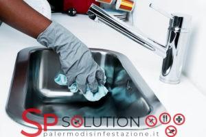 sanificazione-ambienti-locali-palermosp solution-palermo disinfestazione